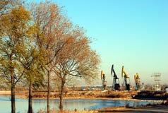 Bäume und Pumpen lizenzfreie stockbilder