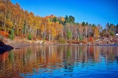 Bäume und Reflexion Lizenzfreies Stockfoto