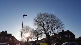 Bäume und Sonnenaufgang Stockfoto