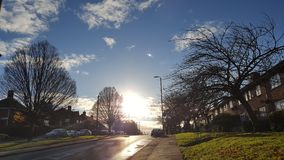 Bäume und Sonnenaufgang Lizenzfreies Stockbild