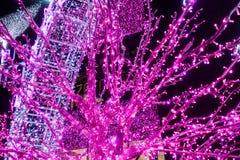 Bäume und Torbögen verziert mit glühendem purpurrotem Neon Stockfotografie