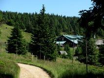 Bäume und Vegetation an den Oberteilen, Å-và ½ cà ¡ RNS lizenzfreies stockfoto