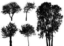 Bäume - vektorset Lizenzfreies Stockfoto