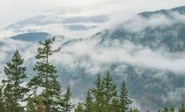 Bäume vor bewölkter Gebirgslandschaft Lizenzfreie Stockfotografie