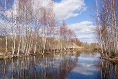 Bäume widergespiegelt in einem See Stockbild