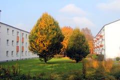Bäume zwischen den Häusern Lizenzfreies Stockfoto