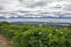Båda sidor av den Kachemak fjärden, Homer Alaska royaltyfri foto