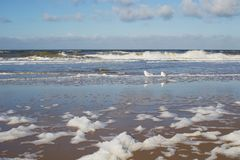 Både havsvågor och skum Royaltyfri Bild