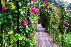 Bågar med rosor på trädgården av Generalife granada Royaltyfria Bilder