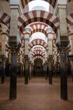 Bågar och pelare av inre av moskén - domkyrka av Cordoba royaltyfria foton