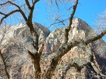 bågeökenliggande nationalpark tagna utah Royaltyfri Bild