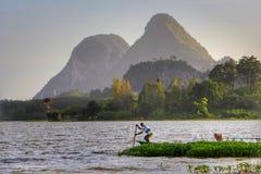 Båtuthyrarerodd på Tasoh sjön, Perlis, Malaysia Royaltyfria Foton