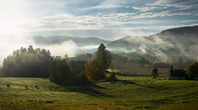 Bææeutiful morning. Morning mist above a meadow with sheep in autumn Stock Image