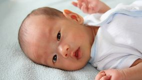 Bébé asiatique sur la couverture banque de vidéos