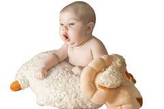 Bébé avec des moutons Images stock