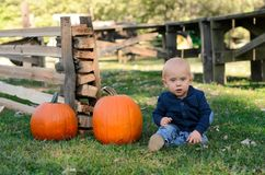 Bébé avec deux potirons mûrs Potirons de cueillette dans la correction de potiron photographie stock libre de droits