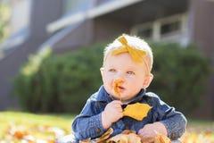 Bébé avec l'arc dans la tête jouant avec des feuilles un jour d'automne Photo stock