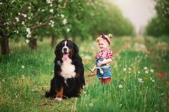 Bébé avec le jardin de Berne de chien au printemps Image libre de droits