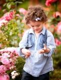 Bébé dans la roseraie Photographie stock libre de droits