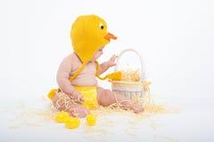 Bébé dans un costume de poulet regardant attentivement dans le panier en osier blanc avec le foin images libres de droits
