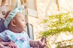 Bébé dans un transporteur de bébé avec le père Photographie stock libre de droits
