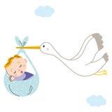 Bébé de cigogne Photos libres de droits