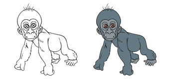 Bébé de gorille Images libres de droits