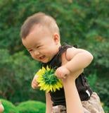 Bébé de levage de mère  Photographie stock libre de droits