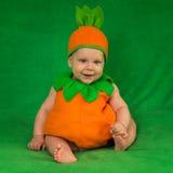 Bébé de potiron Image libre de droits