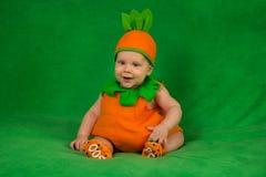 Bébé de potiron Image stock
