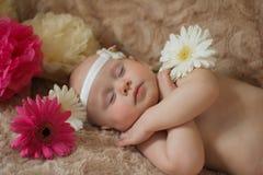 Bébé de sommeil en fleurs Photographie stock libre de droits