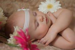 Bébé de sommeil en fleurs Photo libre de droits