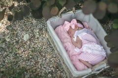 Bébé dormant dans le panier au loin Photos libres de droits