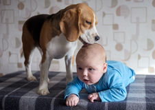 Bébé et briquet Photo stock
