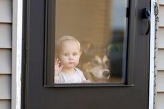 Bébé et chien attendant à la porte regardant la fenêtre Image stock