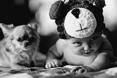 bébé et petit chien Photos libres de droits
