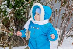 Bébé garçon étonné avec une neige à un jardin d'hiver Images libres de droits
