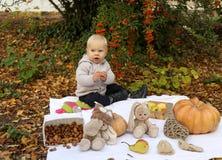 Bébé garçon 1 années, posant avec le potiron et les jouets parmi des arbres i Image libre de droits