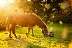 Bébé garçon avec le cheval à la chute photo stock