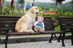 Bébé garçon avec un chien d'arrêt de chien Photographie stock