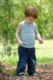 Bébé garçon d'enfant en bas âge découvrant des trésors dans la forêt Images stock