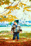 Bébé garçon dans les bois images libres de droits