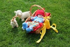 Bébé garçon dans un panier sur l'herbe image stock