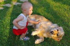 Bébé garçon frottant un chien Image libre de droits