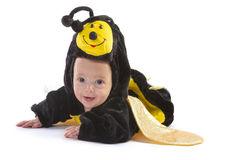 Bébé garçon habillé comme l'abeille Image stock
