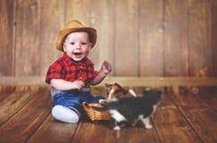 Bébé garçon heureux jouant avec des chatons Photo libre de droits