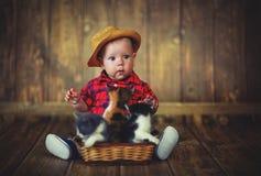Bébé garçon heureux jouant avec des chatons Photo stock