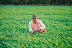 Bébé garçon indien mignon jouant à l'agriculteur gardenIndian au gisement de pois chiche photos libres de droits