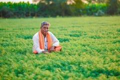Bébé garçon indien mignon jouant à l'agriculteur gardenIndian au gisement de pois chiche photos stock