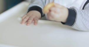 Bébé garçon mangeant le bagel clips vidéos